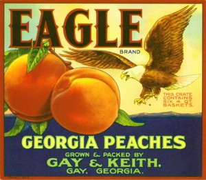 georgia-peaches1